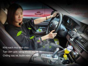 10 cách khử mùi trên xe hơi